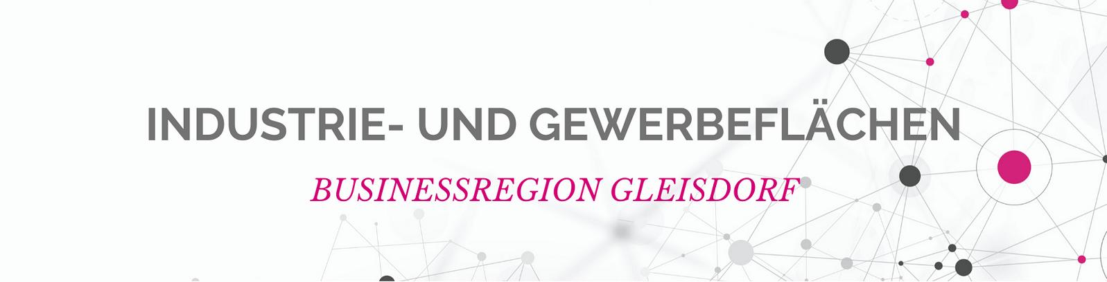 Banner Businessregion Gleisdorf